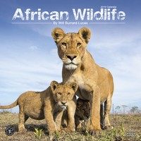 African Wildlife Wall Calendar 2019 by Avonside