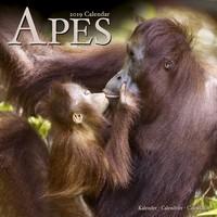 Apes Wall Calendar 2019 by Avonside