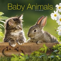 Baby Animals Wall Calendar 2019 by Avonside