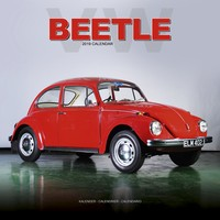 Beetle Wall Calendar 2019 by Avonside