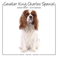 Cavalier King Charles Studio Range Wall Calendar 2019 by Avonside
