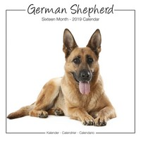 German Shepherds Studio Range Wall Calendar 2019 by Avonside