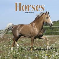 Horses Wall Calendar 2019 by Avonside