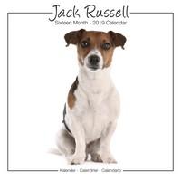 Jack Russell Studio Range Wall Calendar 2019 by Avonside