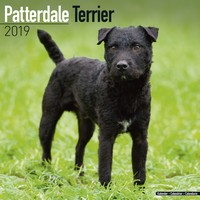 Patterdale Terrier Wall Calendar 2019 by Avonside