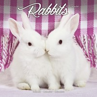 Rabbits Wall Calendar 2019 by Avonside