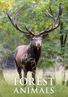 Forest Animals Wall Calendar 2019 by Helma