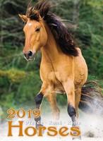 Horses Poster Wall Calendar 2019 by Helma