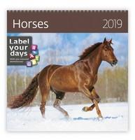 Horses Wall Calendar 2019 by Helma