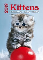 Kittens Wall Calendar 2019 by Helma