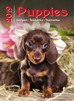 Puppies Wall Calendar 2019 by Helma
