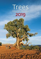 Trees Wall Calendar 2019 by Helma