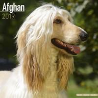 Afghan Wall Calendar 2019 by Avonside