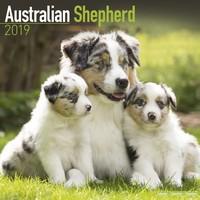 Australian Shepherd Wall Calendar 2019 by Avonside