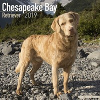 Chesapeake Bay Ret Wall Calendar 2019 by Avonside