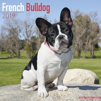 French Bulldog Wall Calendar 2019 by Avonside