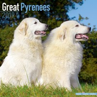 Great Pyrenees Wall Calendar 2019 by Avonside