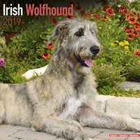 Irish Wolfhound Wall Calendar 2019 by Avonside