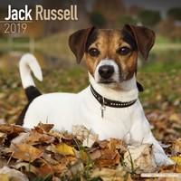 Jack Russell  Wall Calendar 2019 by Avonside