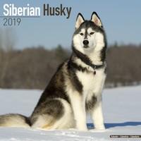 Siberian Husky Wall Calendar 2019 by Avonside
