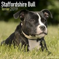 Staffordshire Bull Terrier Wall Calendar 2019 by Avonside