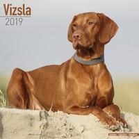 Vizsla Wall Calendar 2019 by Avonside
