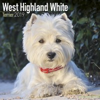 West Highland Terrier Wall Calendar 2019 by Avonside