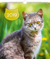 Cats Calendar 2019 by Presco Group