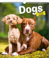 Dogs Poster Wall Calendar 2019 by Presco Group