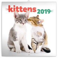 Kittens Calendar 2019 by Presco Group