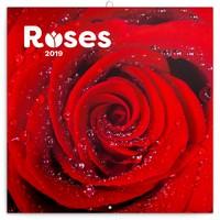 Roses Calendar 2019 by Presco Group