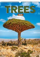 Trees Wall Calendar 2019 by Presco Group