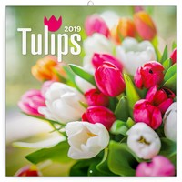 Tulips Wall Calendar 2019 by Presco Group