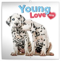 Young Love Wall Calendar 2019 by Presco Group